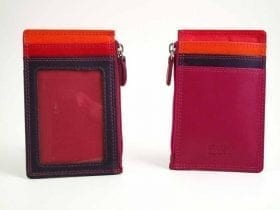 Multi-colour Credit Card Purse